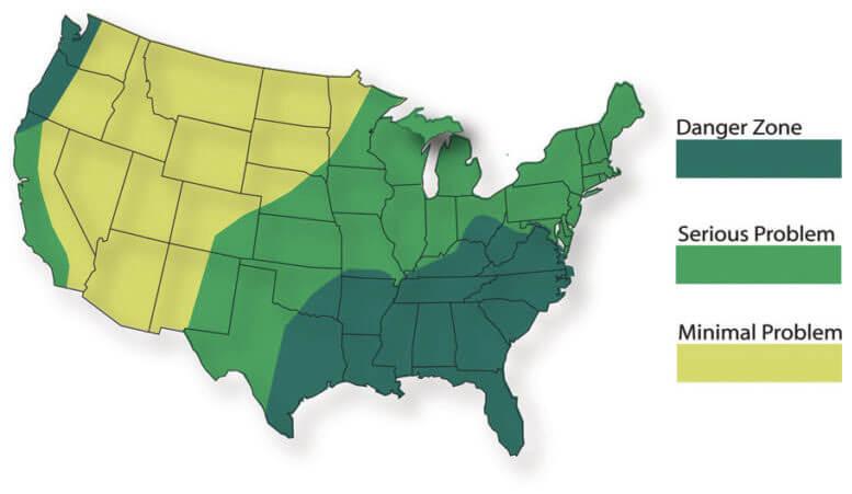 Mold Infestation across the US