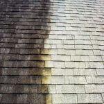 Roof Treatment Closeup B_A 2 PS